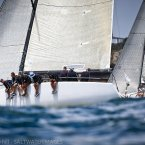 image craiggreenhill-saltwaterimages-7856-jpg